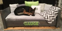 The BEST Dog Bed - you won't believe it, but it's true ...