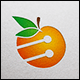 Download Orange Fruit Technology from GraphicRiver