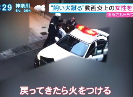 【続報】炎上したワンちゃんを蹴る飼い主がニュースになっていた動画。