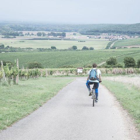 Biking and wine trips are the best! For me bikinghellip