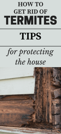 How To Get Rid Of Termites - Tips For Protecting The House ...