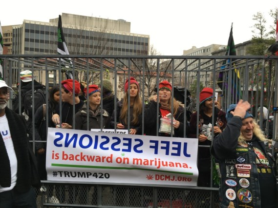"Caged marijuana supporters pass out joints as part of their inauguration rally to ""make America high."""