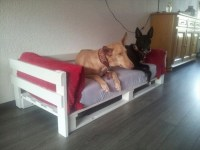 Dog Bed out of Recycled Wooden Pallets | 101 Pallets