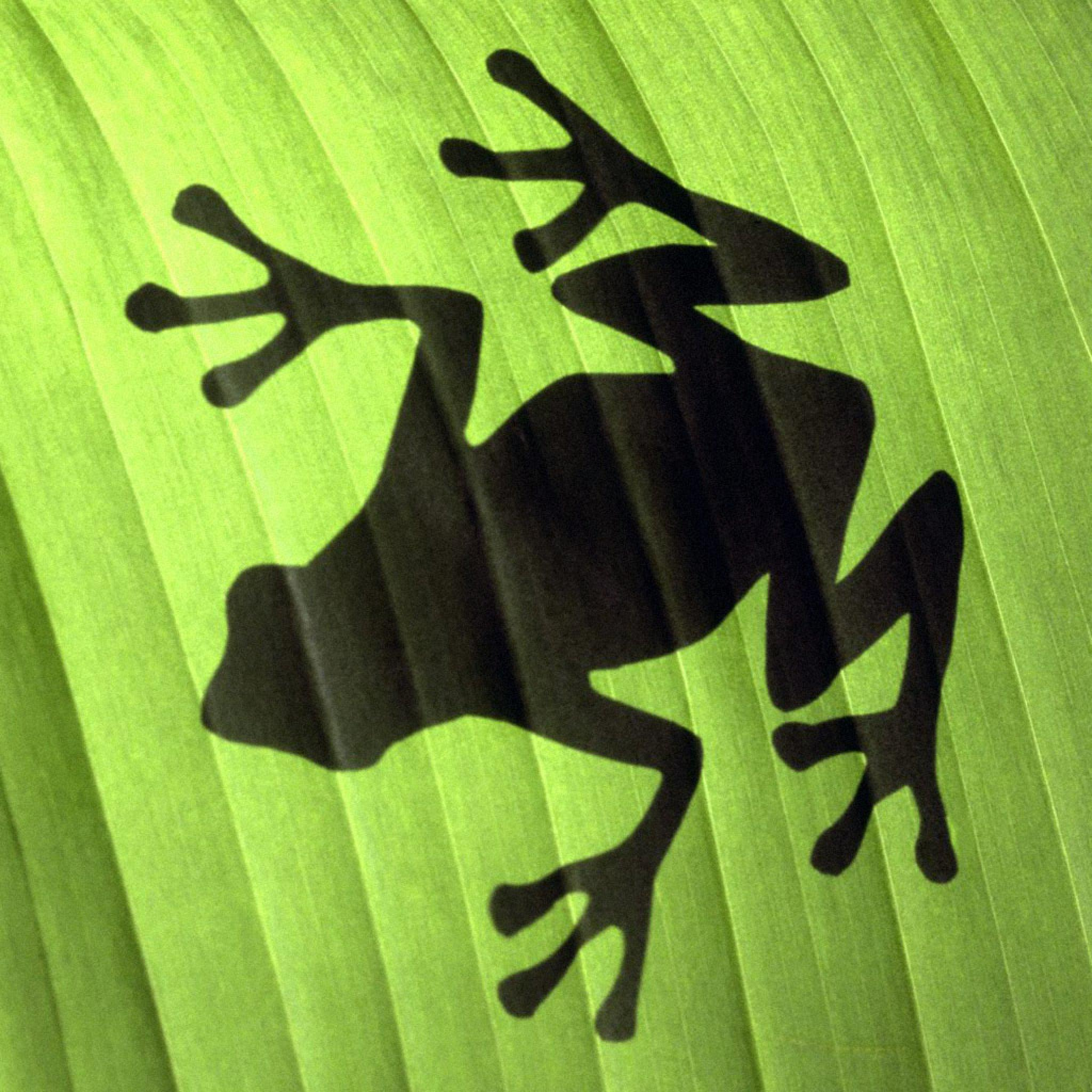 Wallpaper Iphone 3d Touch Animals Tree Frog Shadow Ipad Iphone Hd Wallpaper Free