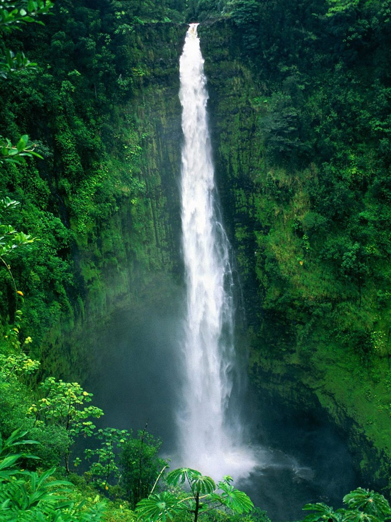 Wallpaper Iphone 3d Touch Nature Akaka Falls Big Island Hawaii Ipad Iphone Hd
