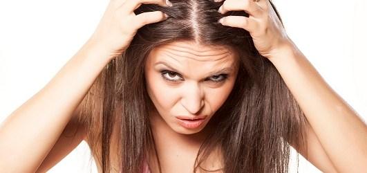 punca rambut botak