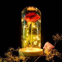Enchanted Rose Flower Lamp  Awesome Deals