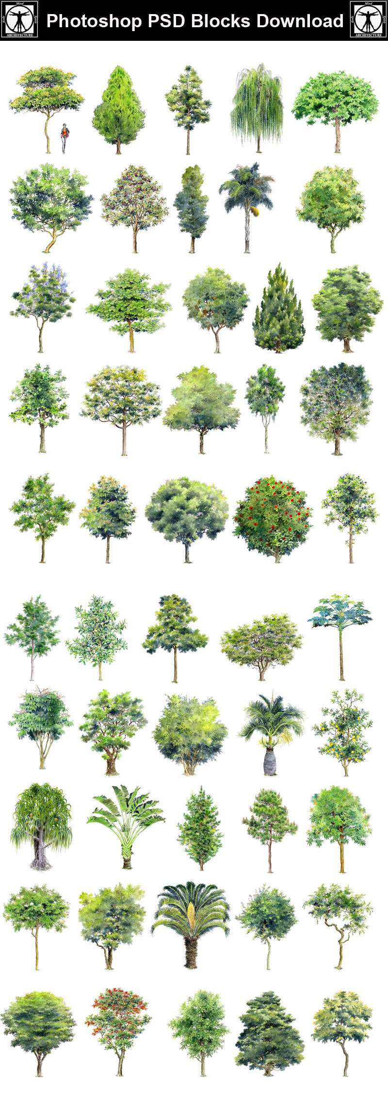 Hand Painted Psd Tree Blocks 2 Free Autocad Blocks Drawings Download Center