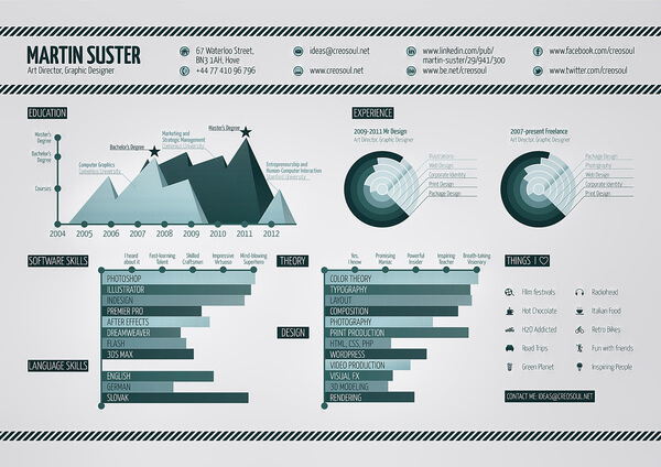 15 Amazing Infographic Resumes To Inspire You - infographic resumes
