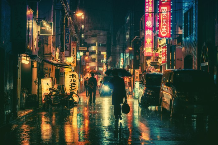 A Rainy Night in Tokyo