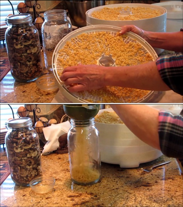 How to Dehydrate Foods to Preserve Them