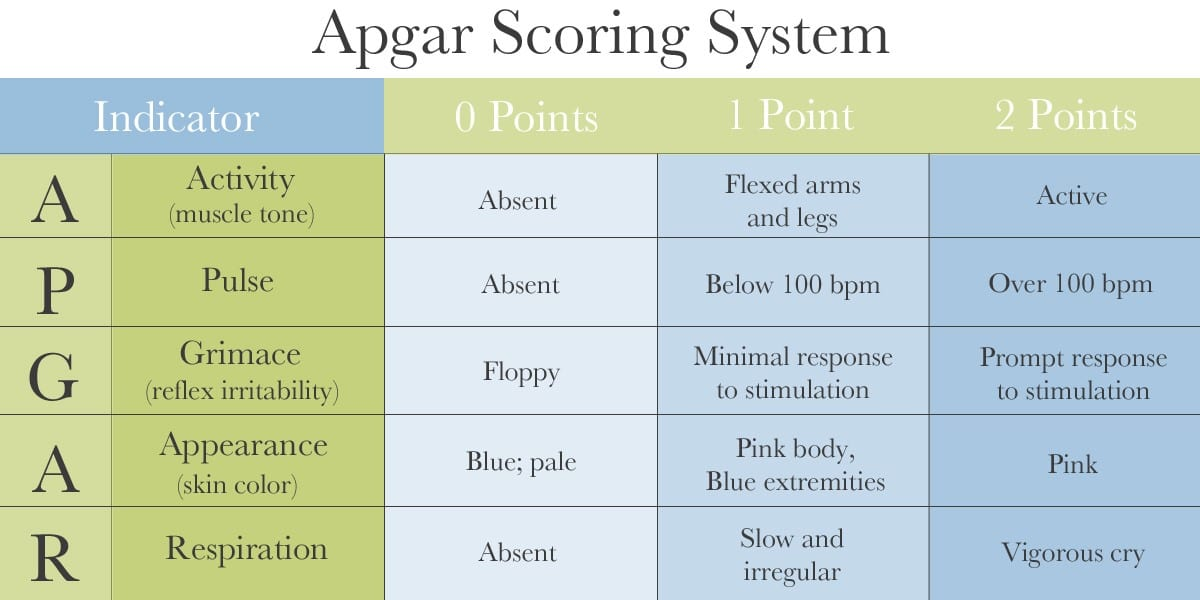 The Apgar Score Assessing Your Baby\u0027s Health After Birth