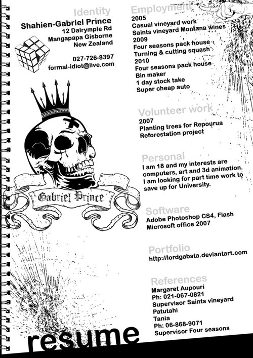 40 Truly Creative Resume Designs for Inspiration - visual artist resume 1