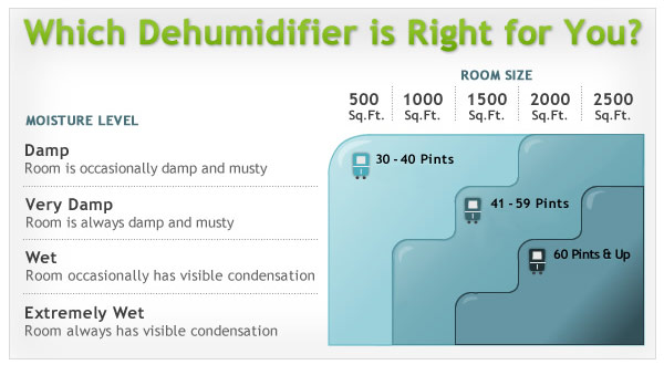 6 Questions You Should Ask About Your Home Dehumidifier