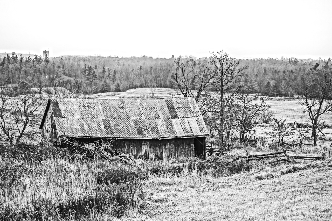 Old Barn Black And White Photography Forum Digital Photography Review