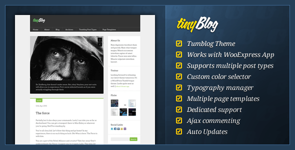 01 tinyblog banner.  large preview 10 Great Tumblr Style Themes for Wordpress