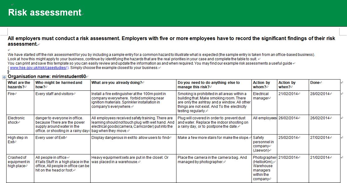Risk assessment report HONG PAGE - risk assessment report