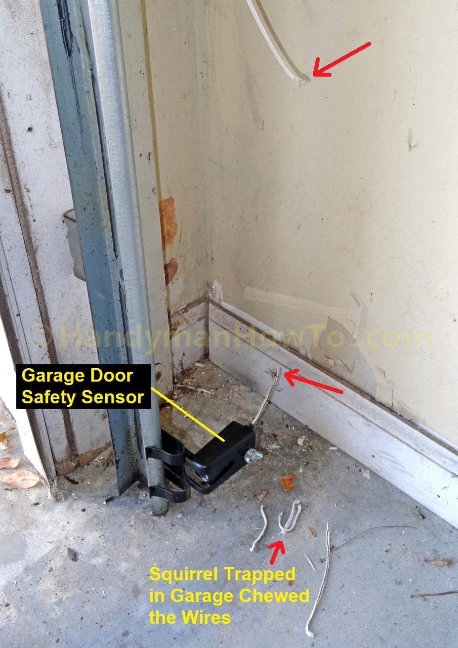 Chamberlain Garage Door Opener Sensor Wiring Diagram from i0.wp.com