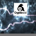 NSA Destroying Privacy: VPN CryptoSeal opts to close down rather than grant NSA access