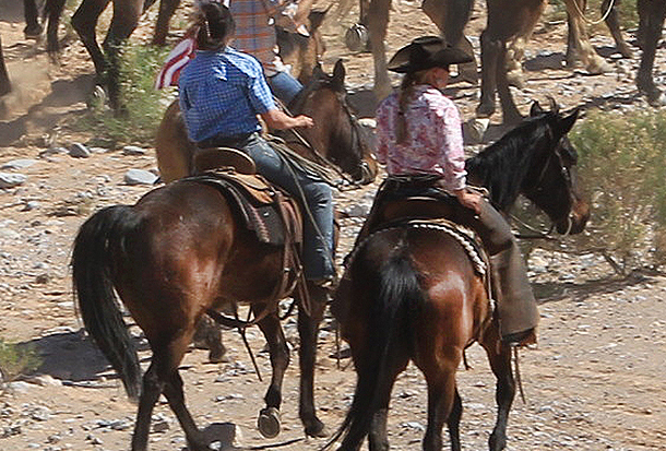 Part 3: BEHIND THE LINES - More Stunning Photos, Video of Bundy Ranch Standoff