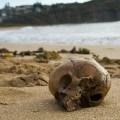 1-1000-Year-Skull-Sydney