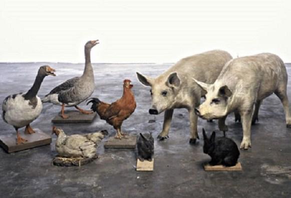 Animal Farm goes global.