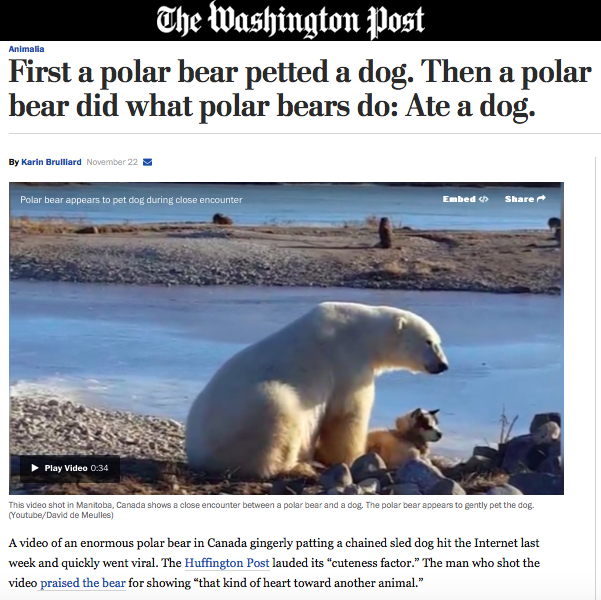 1-washington-post-click-bait