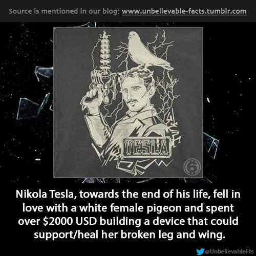 Nikola Tesla, animal lover People of Quality Pinterest - quality engineer resume