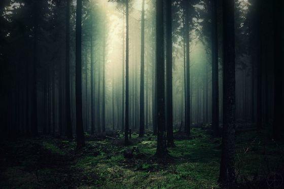 gloomy silence by Ronny Engelmann