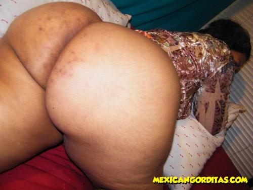 from mexican gorditas bbw pussy