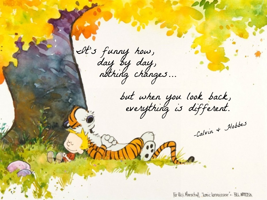Calvin And Hobbes Fall Wallpaper Calvin And Hobbes Quotes On Love Quotesgram
