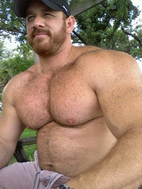 dick hairy bears mens s