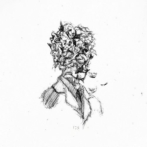 Moose Cute Minimalist Wallpaper Illustration Graphics Portrait Flowers Earth Graphic