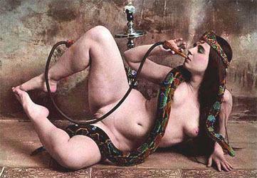 persian art harem