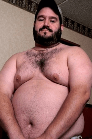 gay latin bear tumblr