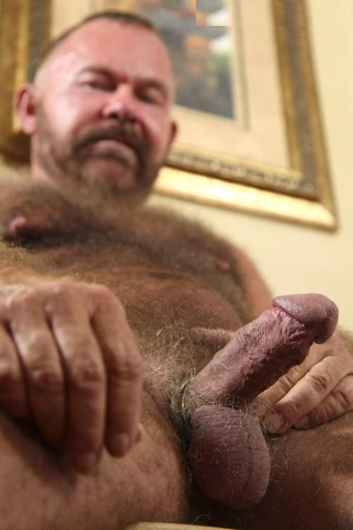 nude gay bears