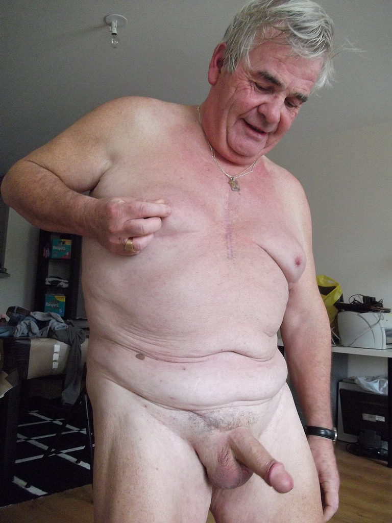 chubby daddy bear