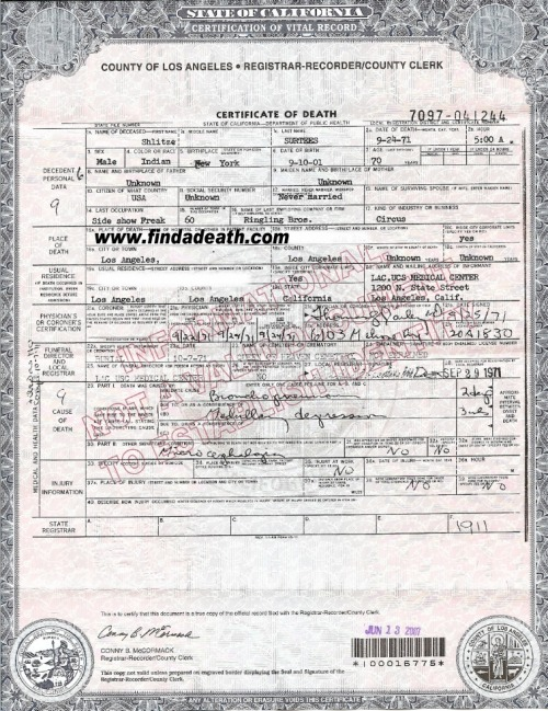 Schlitzieu0027s death certificate, chock-full of inaccuraciespoor - medical certificate form