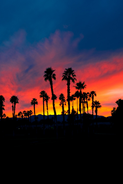 Hypebeast Quotes Wallpaper Cool California Sunset Vertical Lysergiclove