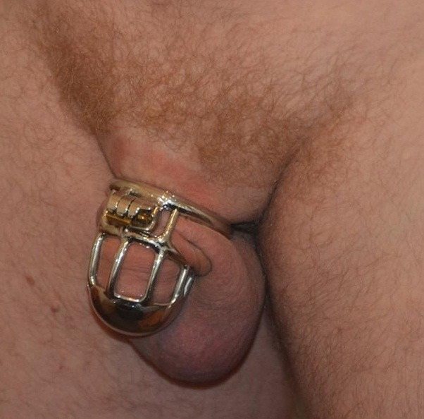 short chastity cage being worn