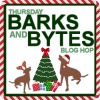 Christmas Barks And Bytes