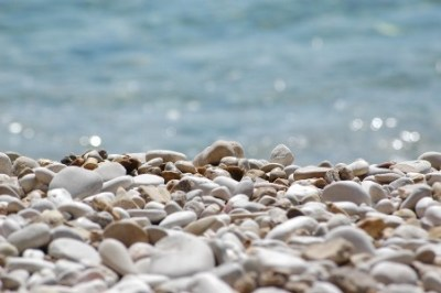 一攫千金!おまえらこの石みつけたら拾うんだぞ!<画像あり>海辺で拾った臭い石を売った結果