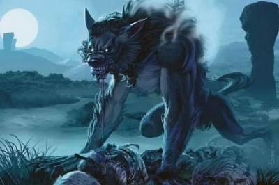 世界で35匹 超希少おおかみ男ネコ(ライコイLykoi)<動画像>南アフリカの公園で見つかる