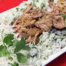 Slow Cooker Cuban Pork square 1