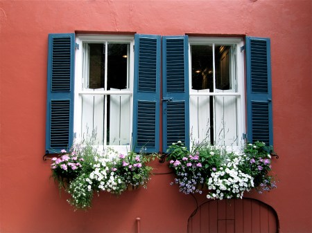 Window Charleston Sc