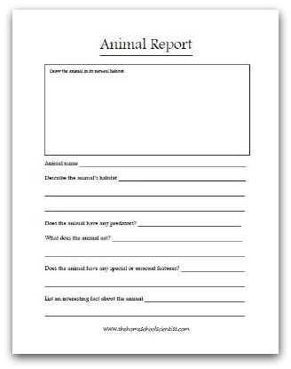 Animal Report Printable