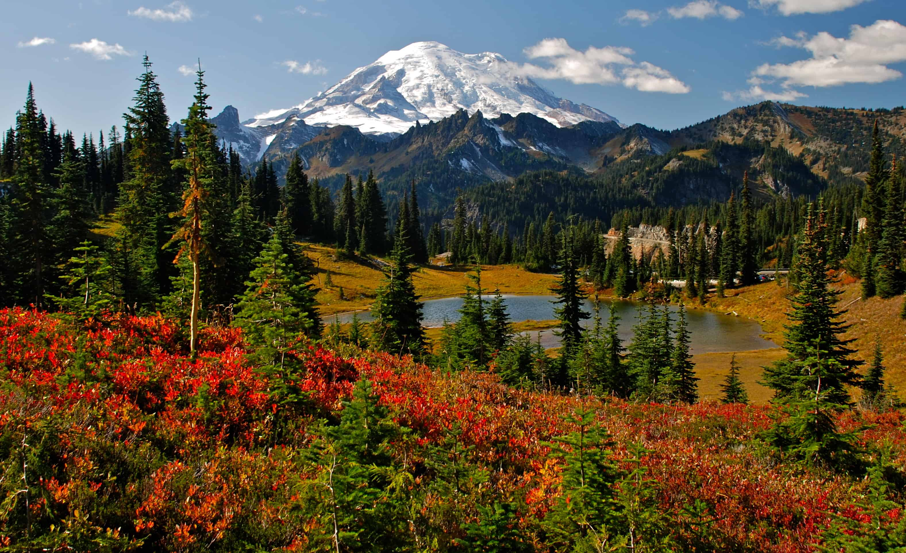 Fall Scenery Iphone Wallpaper Mount Rainier Best Fall Hikes Events Festivals And