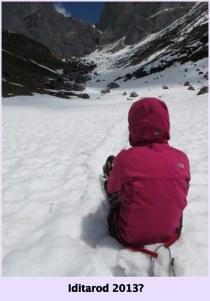 Self Rescue: Iditarod 2013? - Rätikon, Switzerland