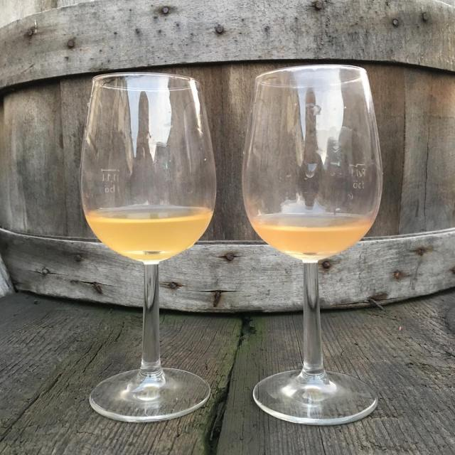Two highend skin fermented Silvaners this year Two different soilshellip