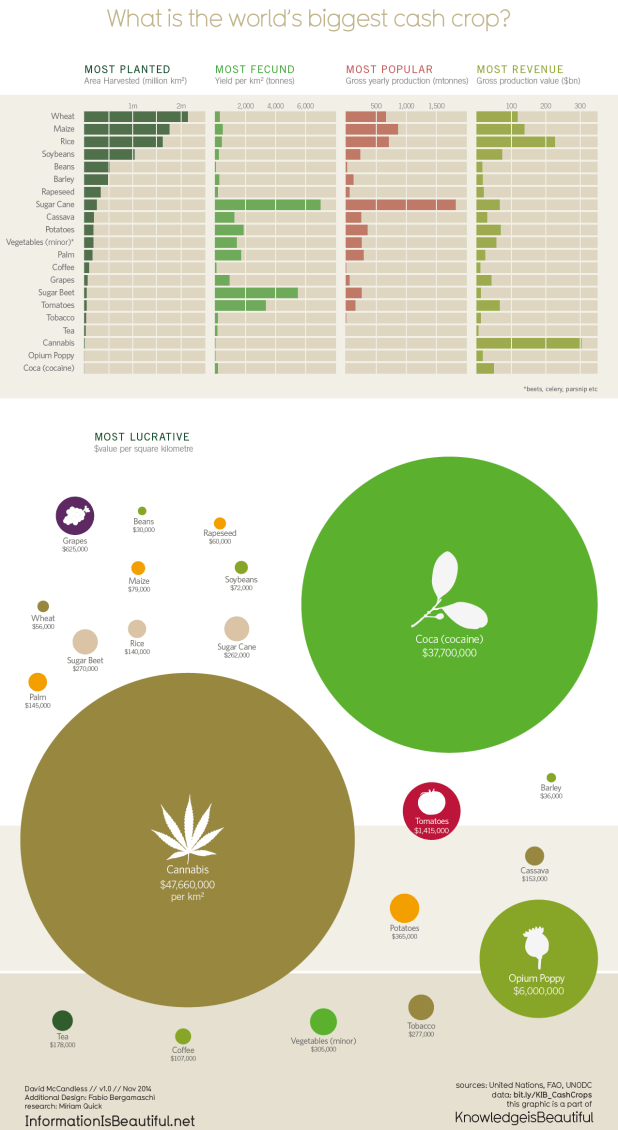 The World's Most Valuable Cash Crop